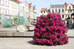Pielęgnacja roślin w wieżach kwiatowych