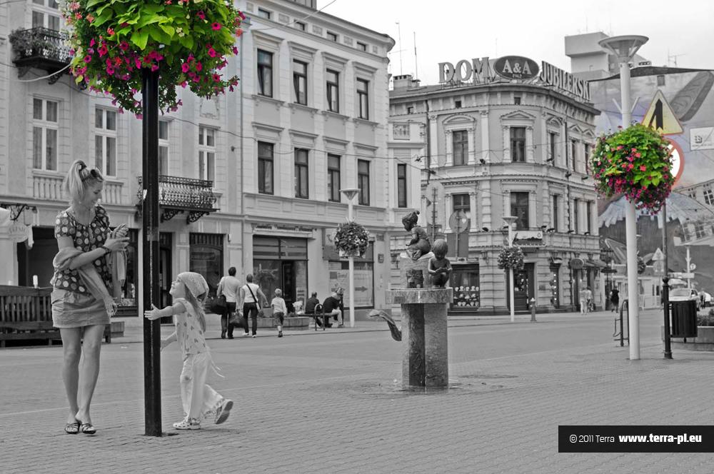 kwiaty w mieście Łódź2