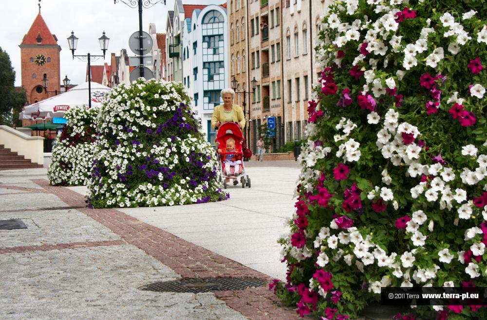 kaskadowe konstrukcje kwiatowe