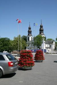 Kwiaty w Mińsku Mazowieckim