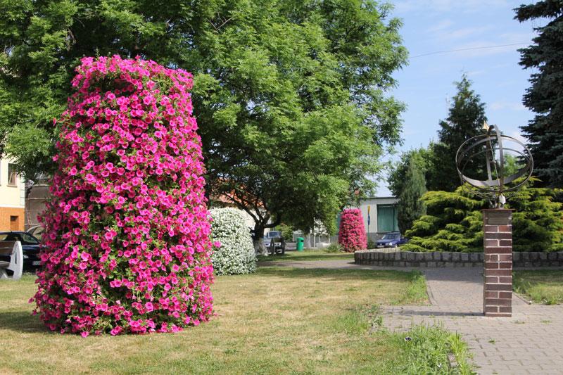 Piękne kwiaty – piękny rynek