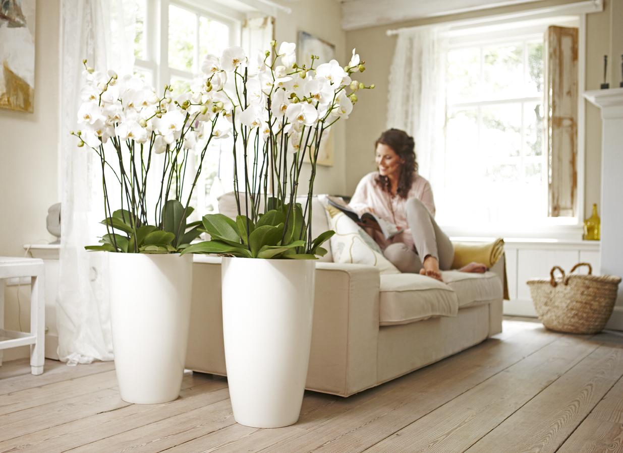 Niech design zagości w Twoim domu!