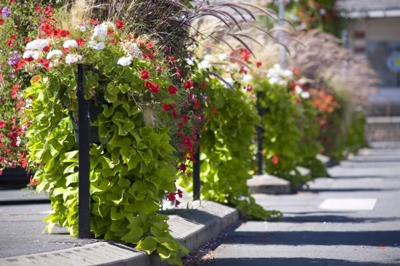 Skrzynki kwiatowe Atech