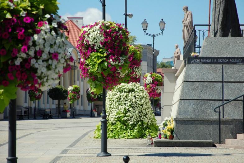 Terra Flower Power Białystok