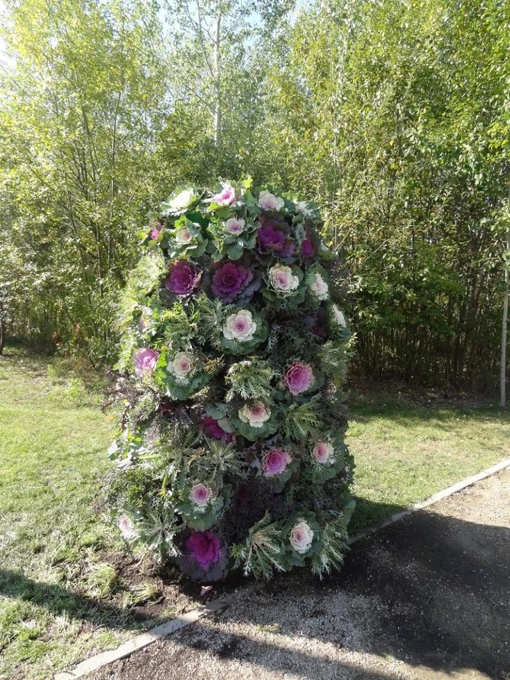 wieże kwiatowe Terr