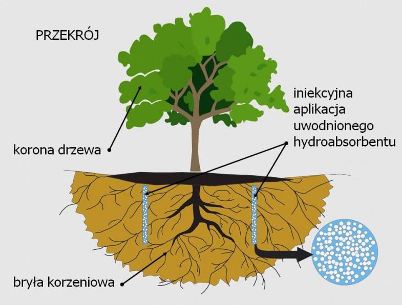 hydrogel terra
