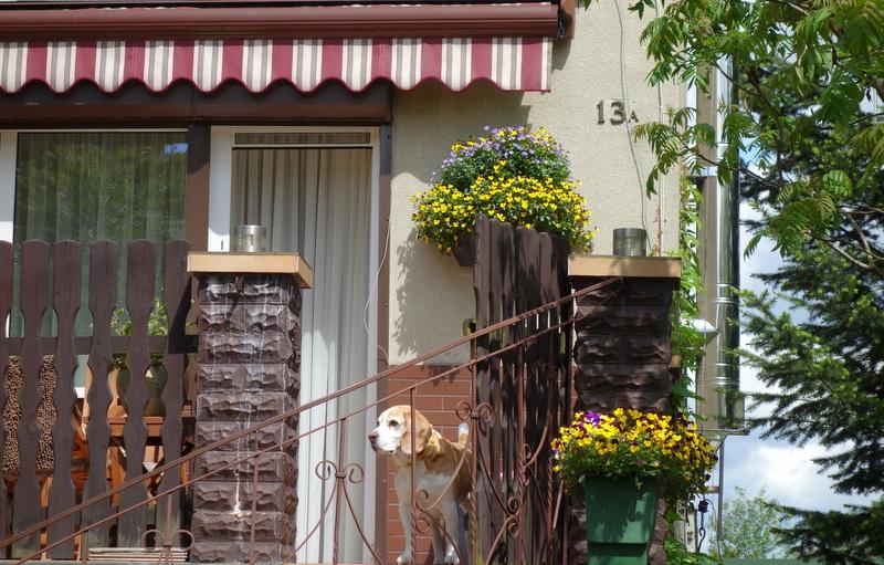 skrzynki kwiatowe atech (1)