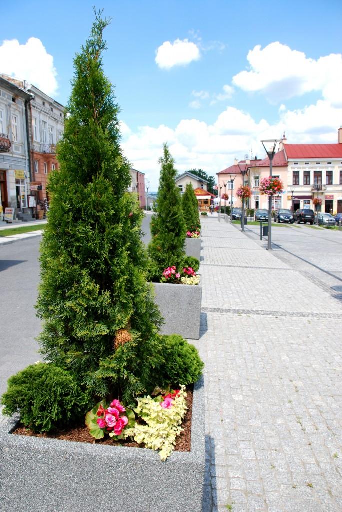 kwietniki miejskie terra (1)