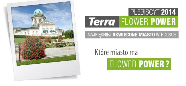 które miasto ma Flower Power
