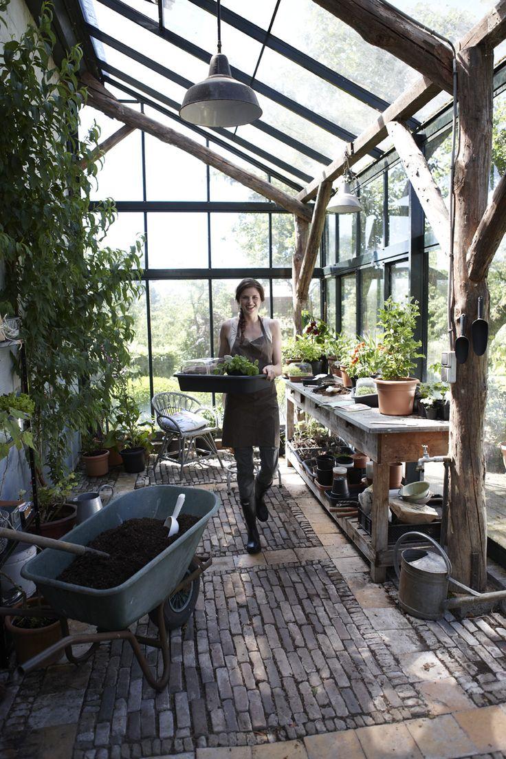 ogród zimowy elho (4)