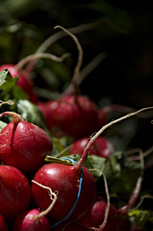 warzywa dowarzywnika (1)