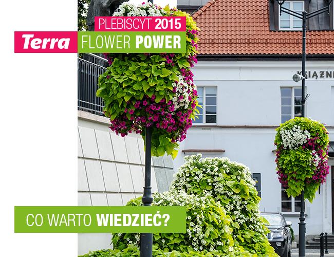 terra flower power co warto wiedzieć