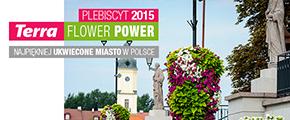 Plebiscyt Terra Flower Power – 3... 2... 1...