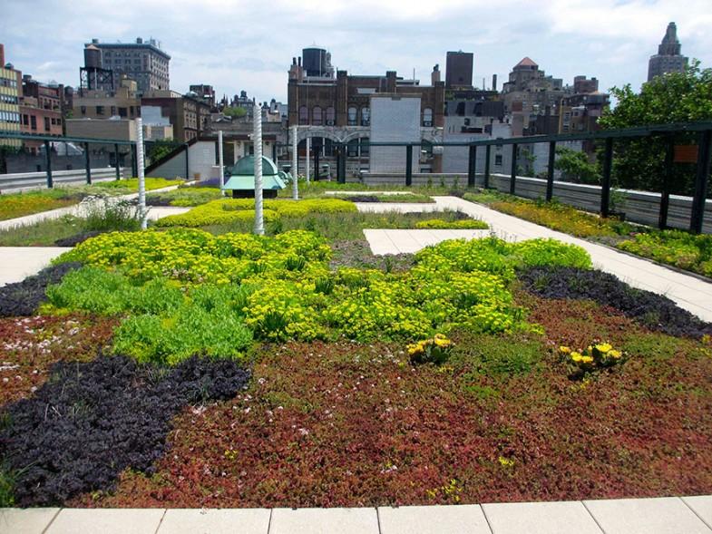 ogród na dachu nowy jork (1)