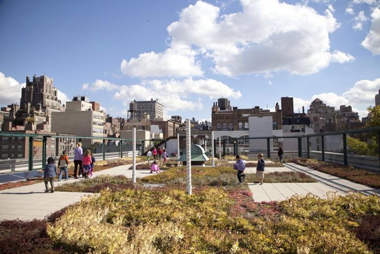 ogród na dachu nowy jork (11)