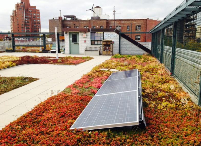 ogród na dachu nowy jork (2)