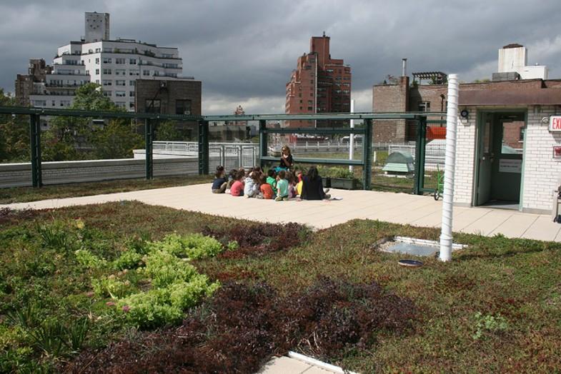 ogród na dachu nowy jork (8)