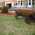 Kobyłka