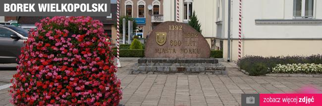 Borek Wielkopolski
