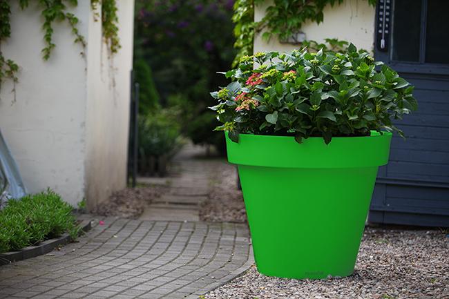 kolorowe donice nunoni (4)