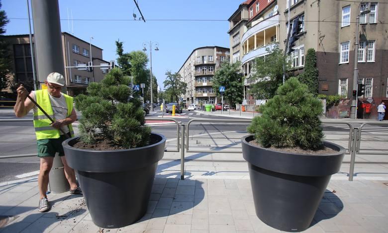 donice miejskie gianto (2)
