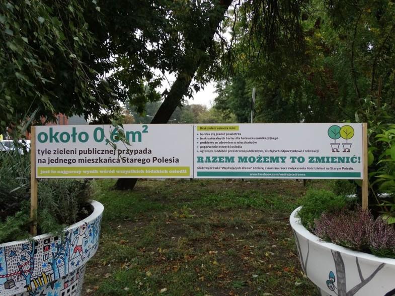 delegatura Łódź Bałuty, wędrujace drzewa nunoni (4)
