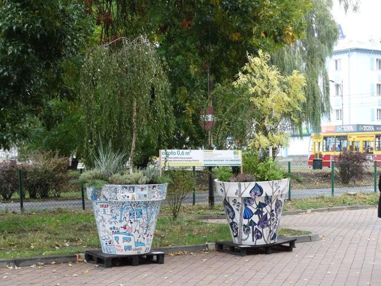 delegatura Łódź Bałuty, wędrujace drzewa nunoni (8)
