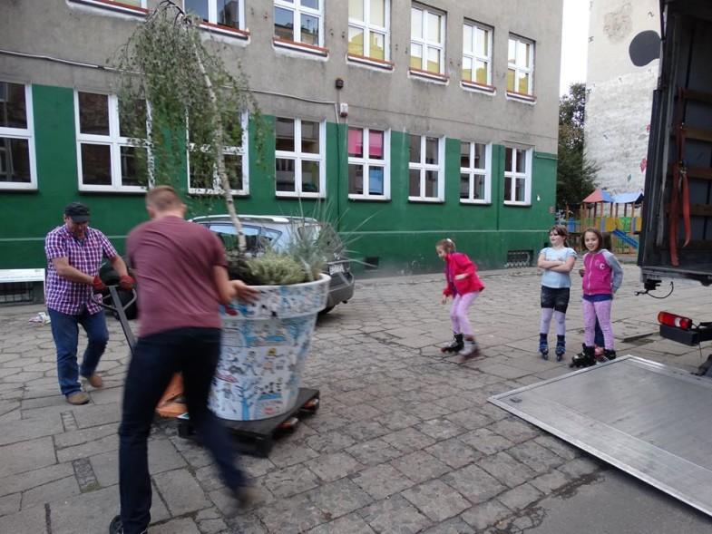 wędrujące drzewa nunoni dzieci (4)