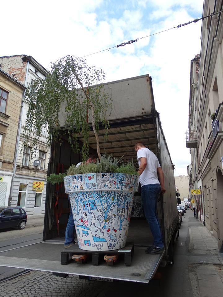 wędrujące drzewa wielkie donice nunoni (5)