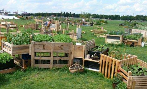 Ogrodnictwo miejskie – snobistyczne czy ratunkowe (6)