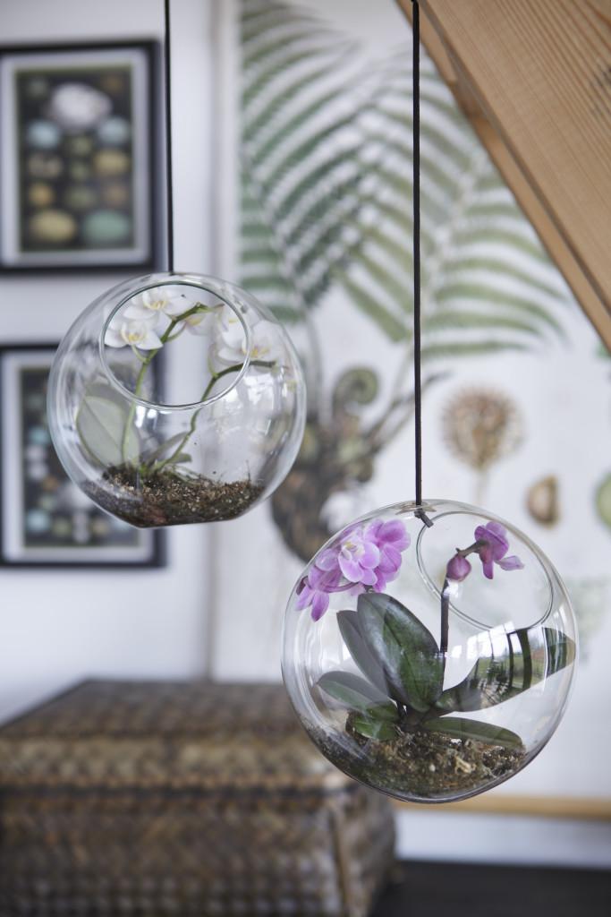 Szklane ogródki nabite wbutelkę (1)