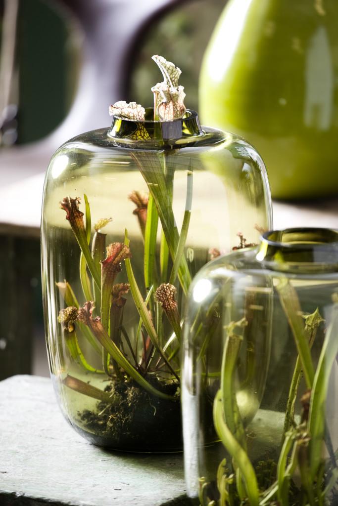 Szklane Ogródki Nabite W Butelkę Inspirowani Naturą