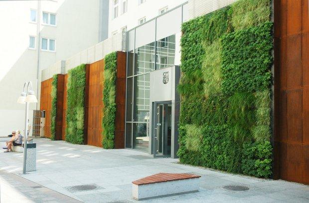 zielone ściany wrocław (7)