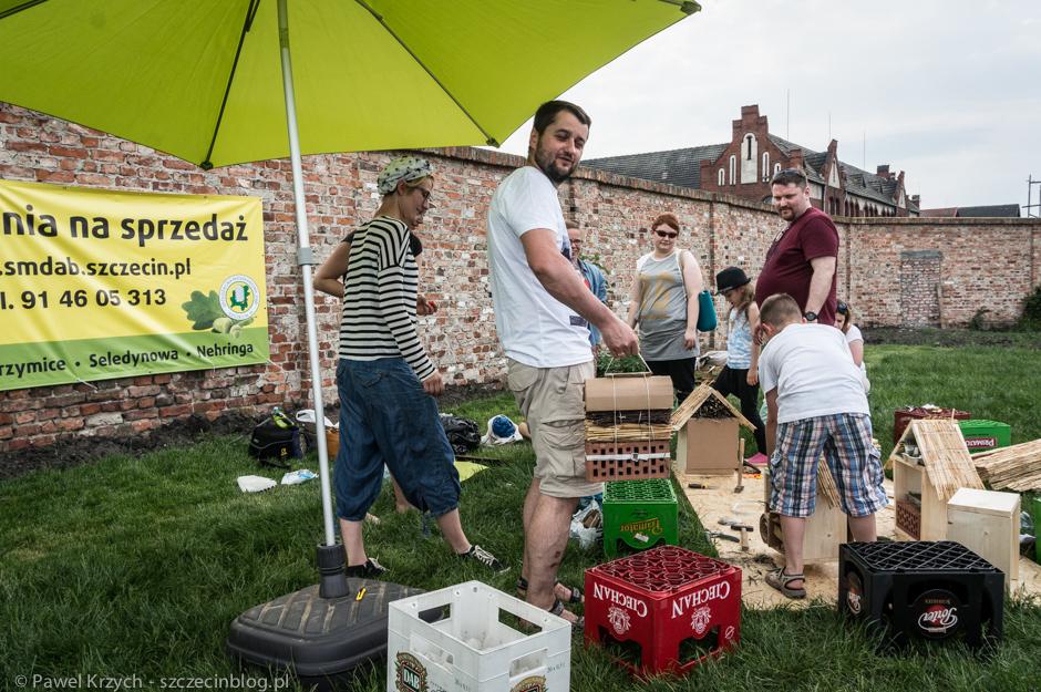 ogród społeczny szczecin 2016 (7)
