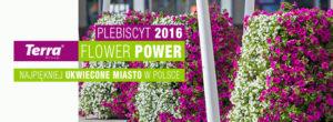 Zagłosuj i wybierz najpiękniej ukwiecone miasto w Polsce!