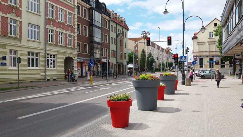 donice nunoni dla miast (3)