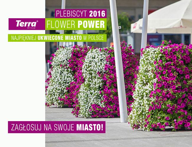 144 miasta mają flower power!