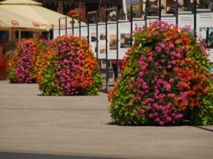 Sezon na miejskie dekoracje trwa cały rok!