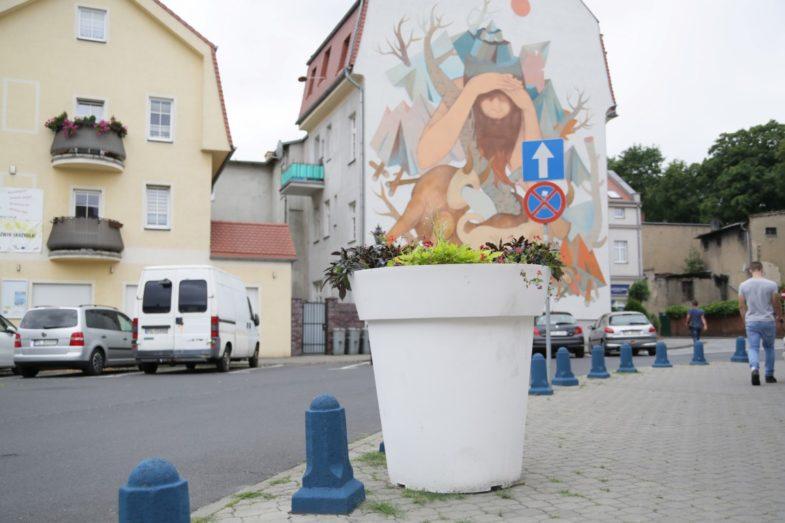 wielkie-donice-nunoni-leszno-gianto-4