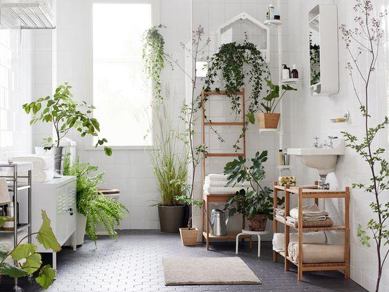 Rośliny W łazienkach Do Wyboru Do Stylu I Koloru
