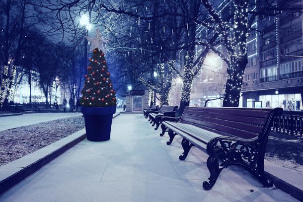 Jak przekształcić donicę w bożonarodzeniową dekorację?