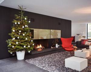 Jak wybrać donicę dla świątecznej choinki?