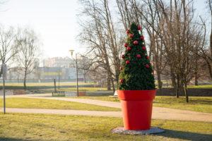 Lubin: giganty w świątecznym przebraniu