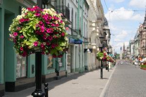 Ekspertka: standardy dotyczące oświetlenia w miastach - do ponownego przemyślenia