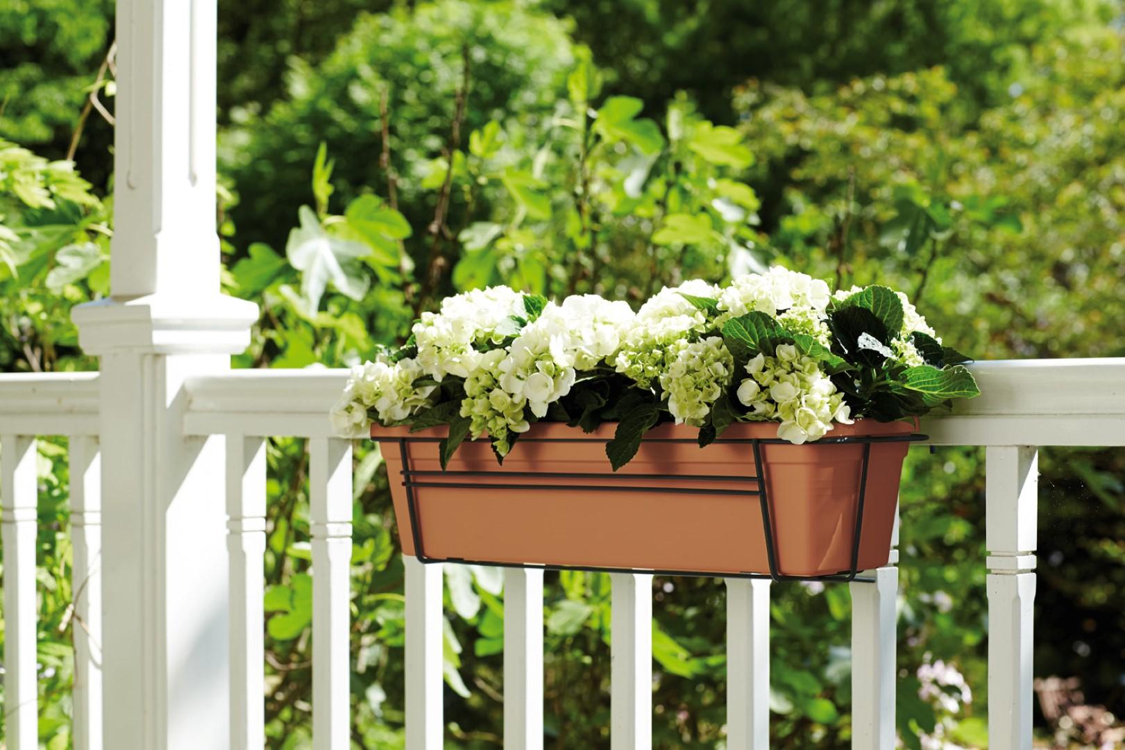 Twój Własny Ogród Czyli Zielone Nowości W Sklepie Make It Home