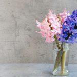 Jak dbać ocięte kwiaty?