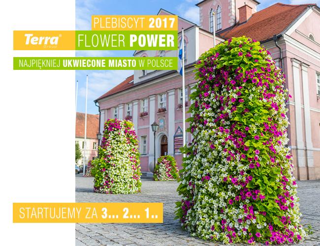 Plebiscyt Terra Flower Power 2017- ruszamy w lipcu!