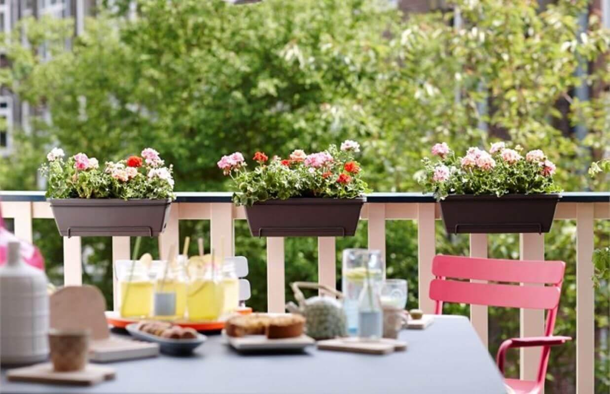 Jak dbać o rośliny, kiedy jesteśmy na urlopie?