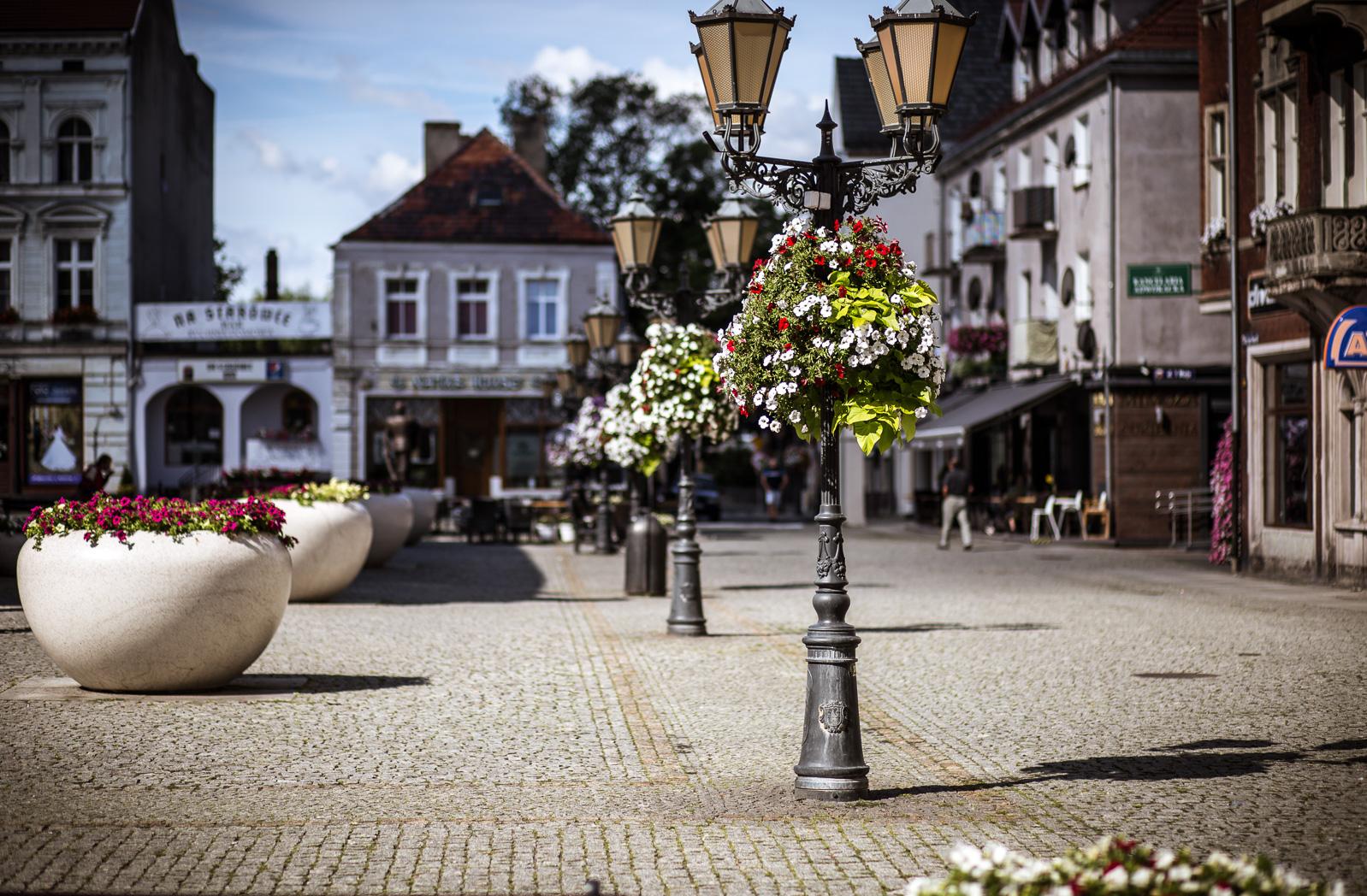 wiszące wieże kwiatowe terra ukwiecenie miasta świebodzin (5)