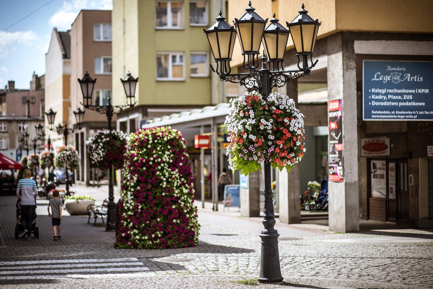 wiszące wieże kwiatowe terra ukwiecenie miasta świebodzin (9)